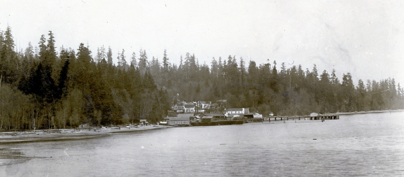The Colby Lumber Mill is located in the center at the water's edge, with the pier extending eastward. Note the Temperance Hall at the base of the pier. From the McFate Family Collection.