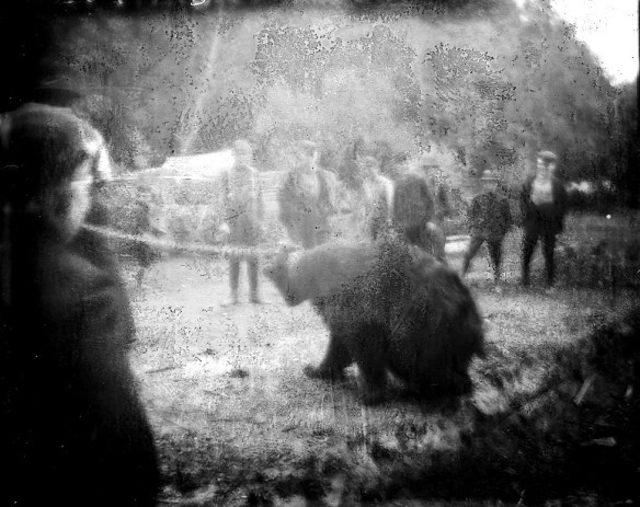 Wildlife abounded, as this photo attests. A large bear apparently was captured and chained, and the locals were apparently training it or, at the very least, treating it like a pet. From the Jay Blackburn Collection.