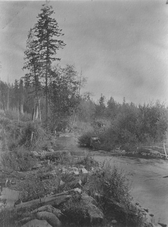 Gates Ranch Curley Creek 3