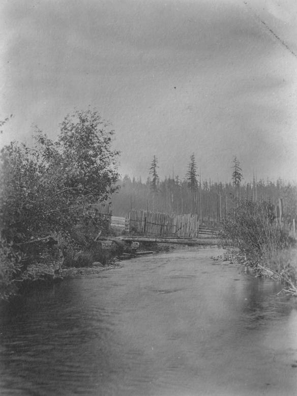 Gates Ranch Curley Creek Footbridge