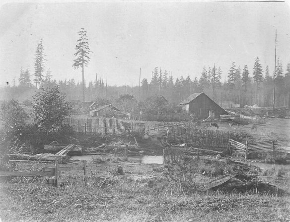 """View of ranch from eastern side. Colby, Wash. 1908."" The house (partially hidden by trees) and barn (right) are shown with Curley Creek in the foreground. Note the log footbridge to the left."